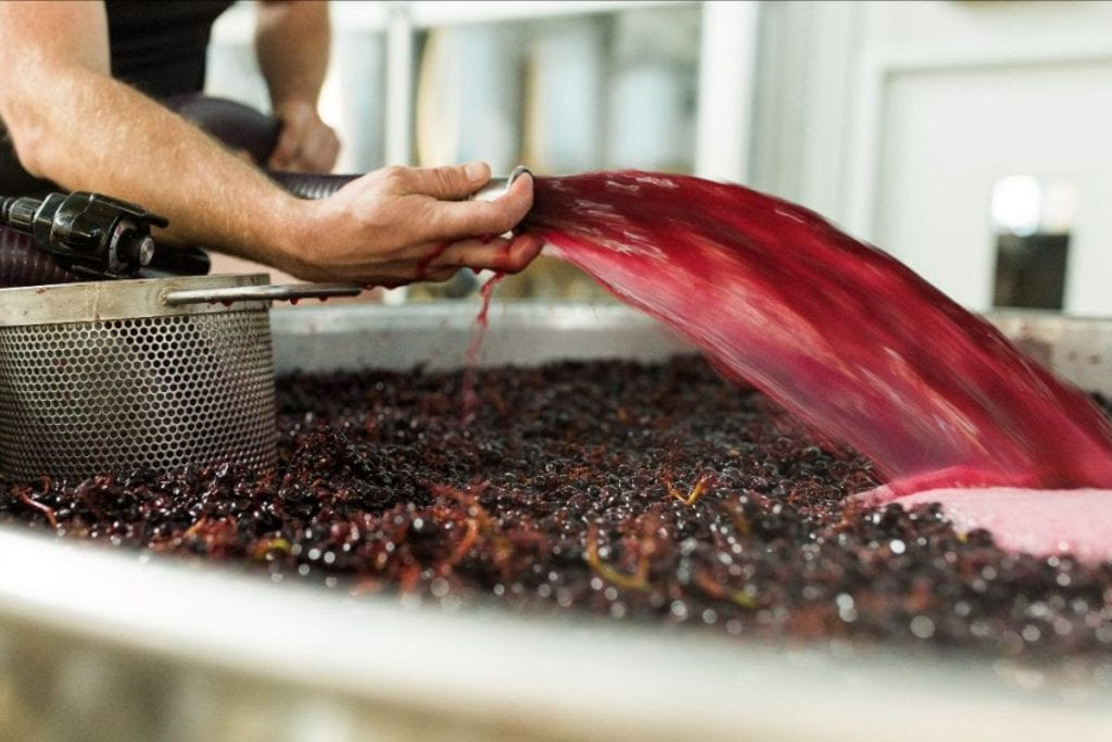 Tantalus Vineyards #BCHarvest19